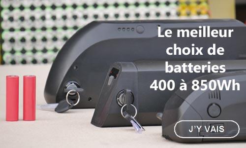 Batterie pour vélo electrique